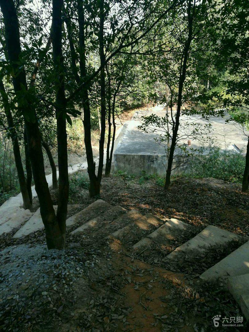火帽金全程丛林40公里徒步【去旅行】未命名