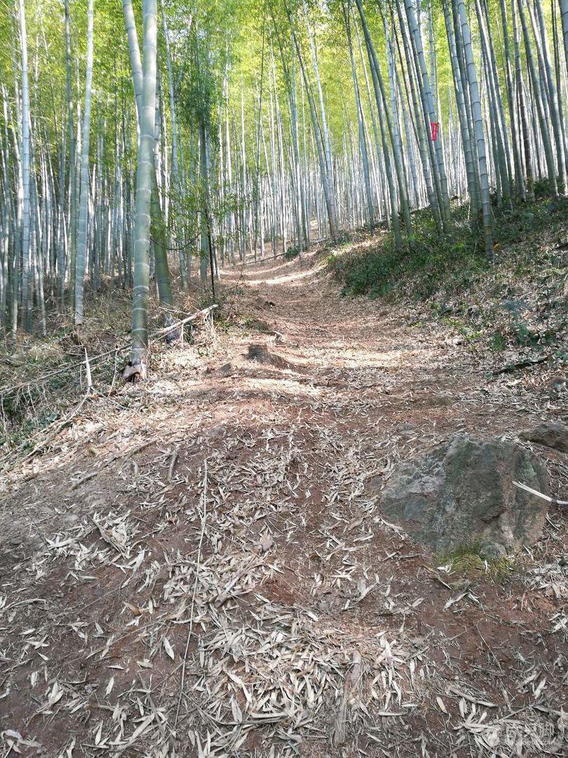 扶峰岭-黄塔顶-宜兴竹海环线路陡