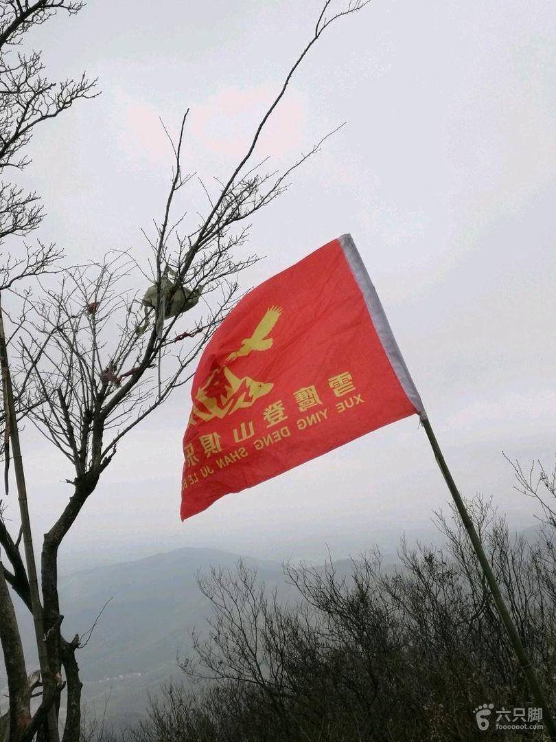 旗 旗帜 旗子 810_1080 竖版 竖屏