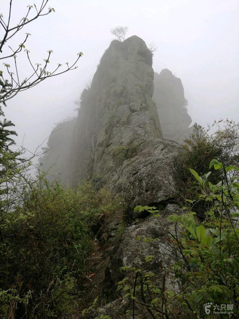 黄岩石大人峰一莲尖坪一松岩山小环线未命名