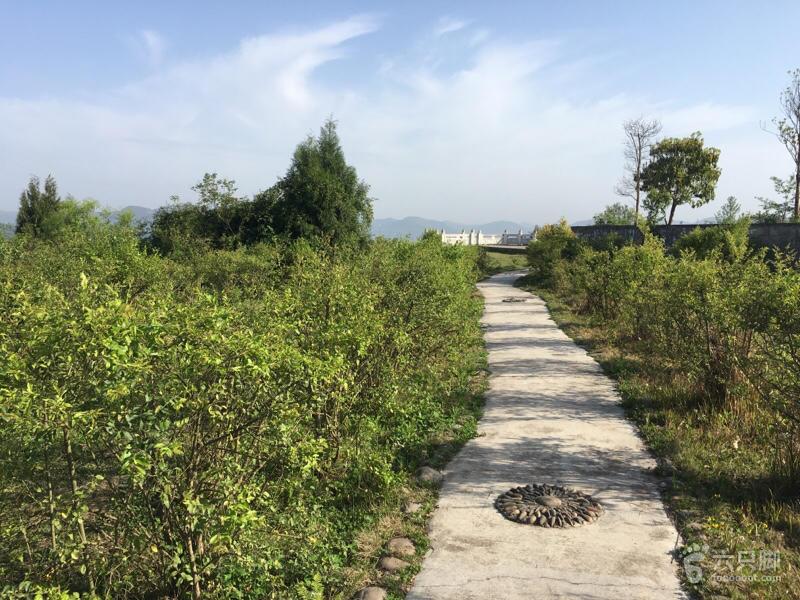 升钟湖(二)未命名
