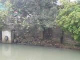 污水沉淀池旁垃圾及生活废弃物较多影响两岸美化,需挖除。