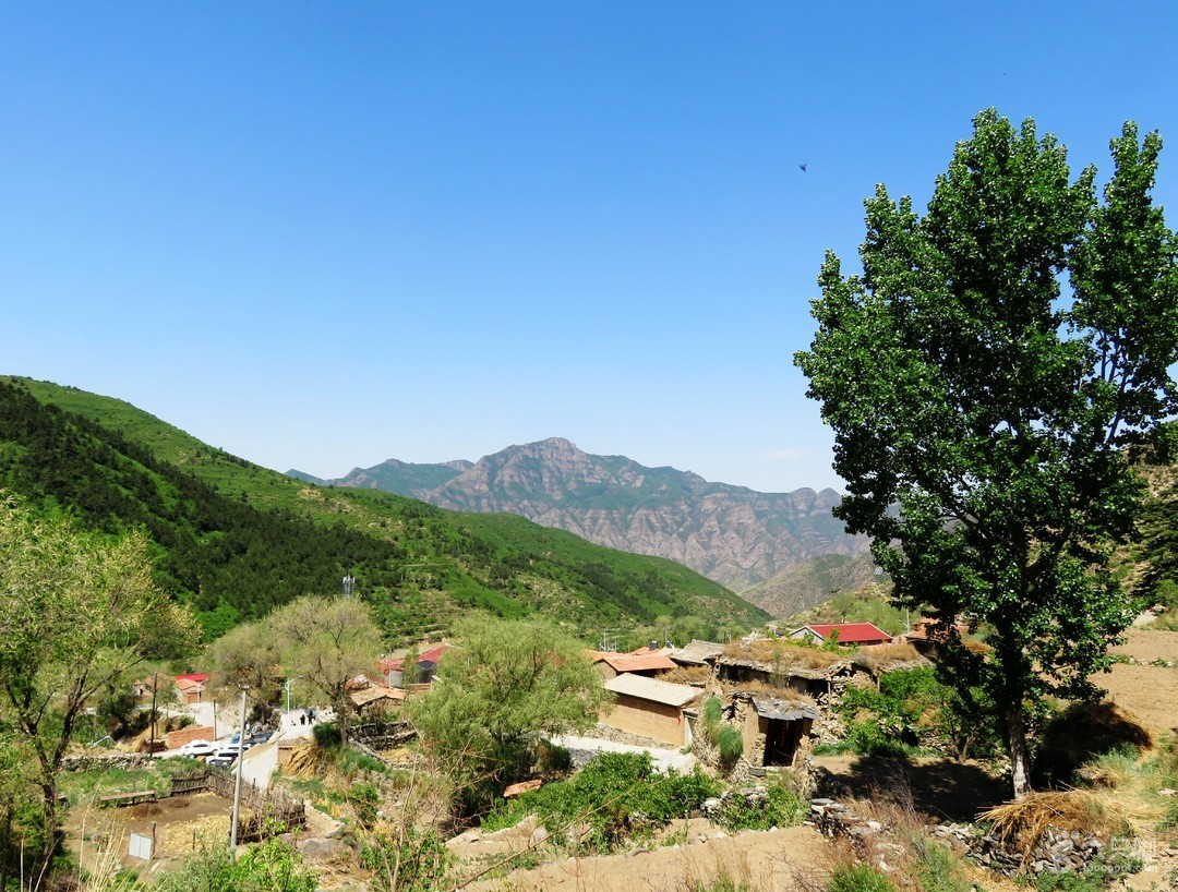 塔尔寺-北灵山(韭山)-塔尔寺(环登)IMG_7590
