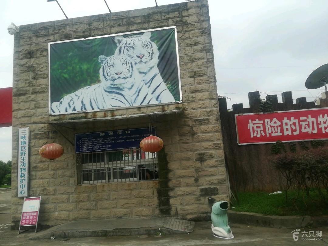 宜昌项目野生动物园