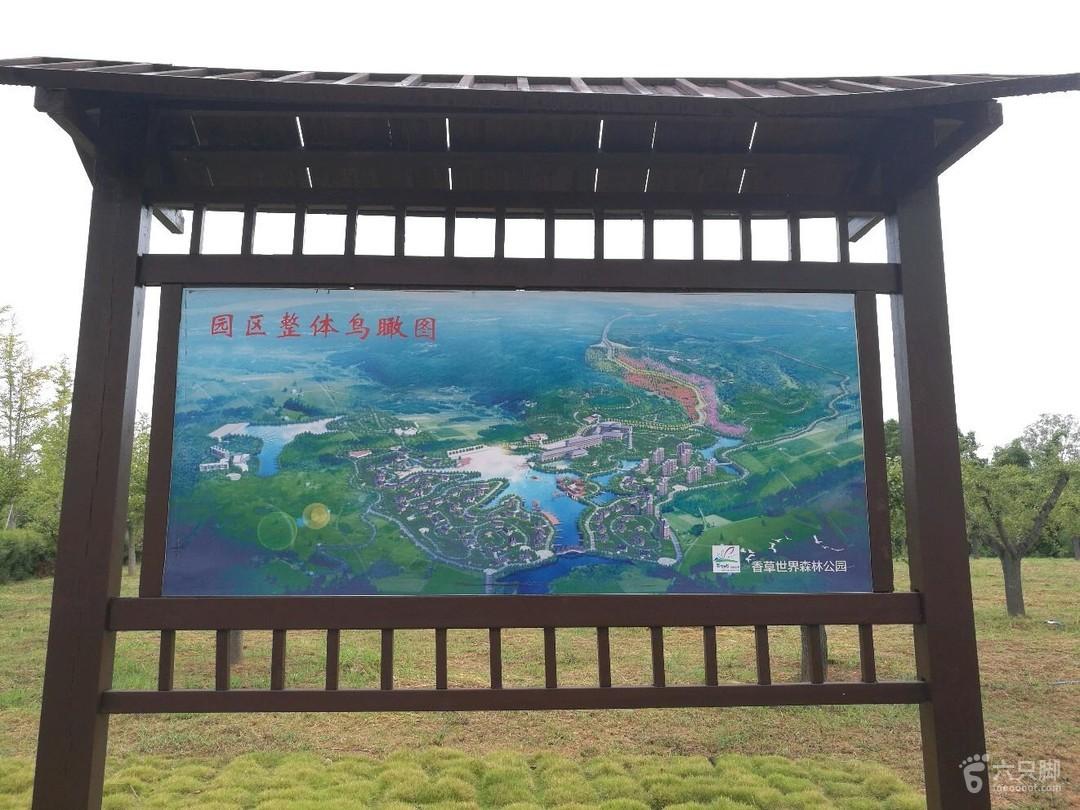 南雄香草世界森林公园鸟瞰图图片