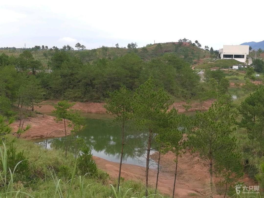 南雄香草世界森林公园饮水工程图片