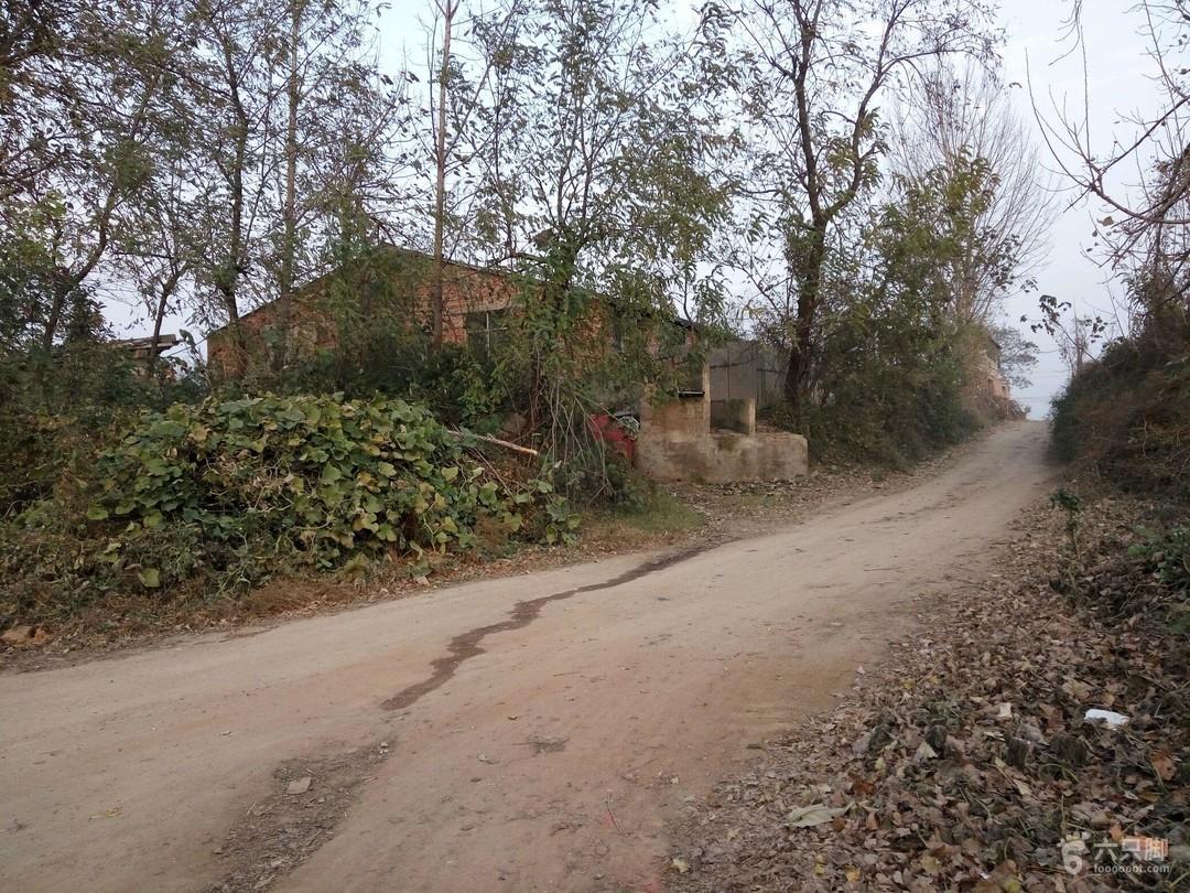 沙河湛河区11.28养猪场,左岸,西安村西北渡镇,学校高中双楼录取线图片