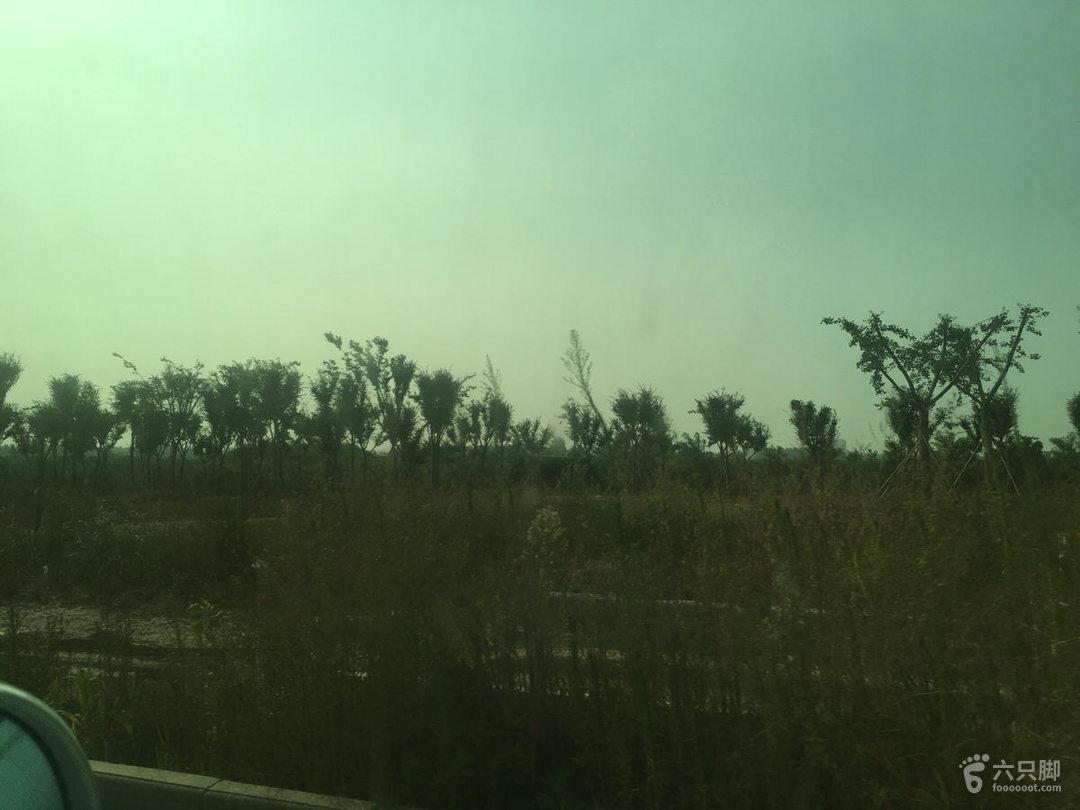 梧桐湖未命名