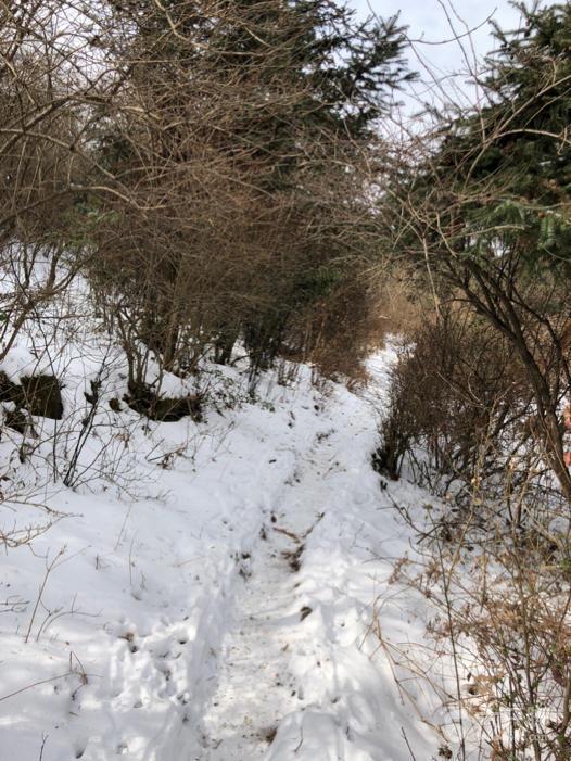 黄石坦环线+冰瀑未命名