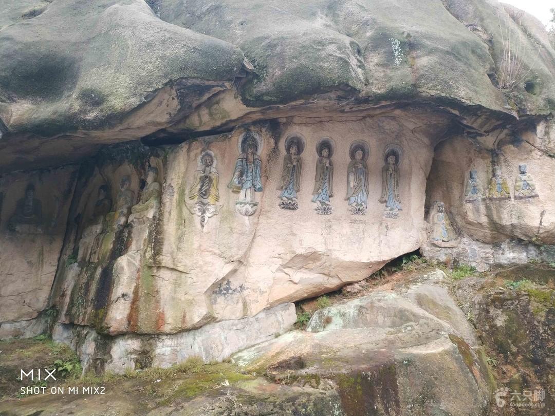 大罗山相剖面结构类型图