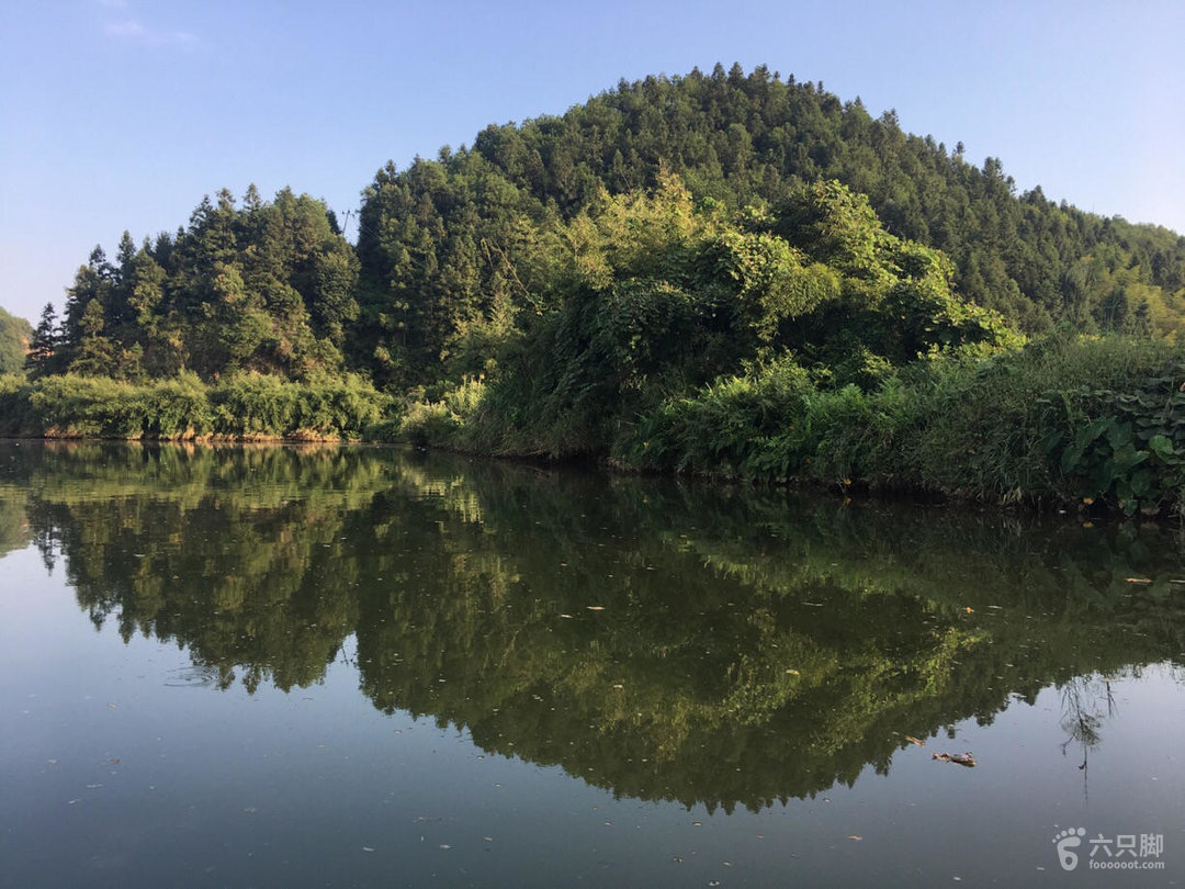 楠木林濕地公園未命名_腳印_建陽市_六只腳