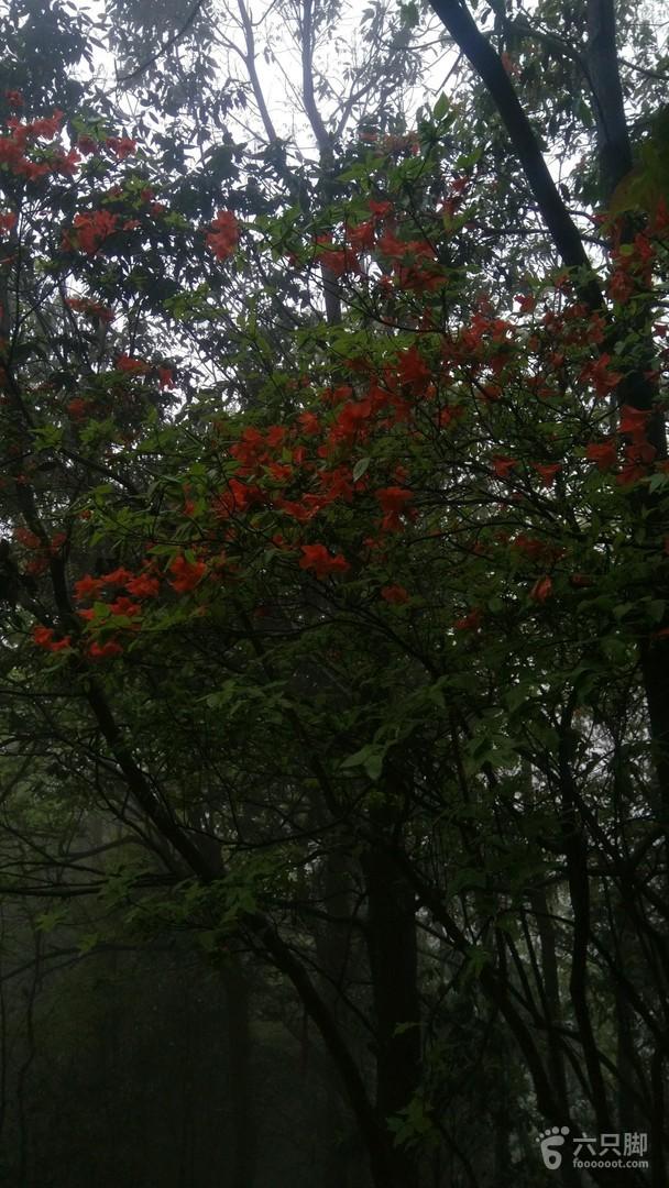 武功山徒步龙山村——景区正门76