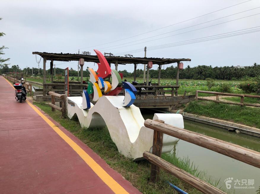 龙寿洋田野公园脚印-10