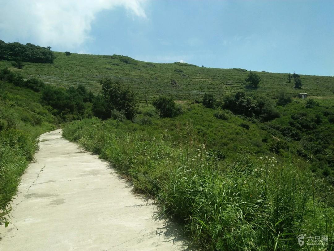 妙峰山森林公园15㎞徒步图片