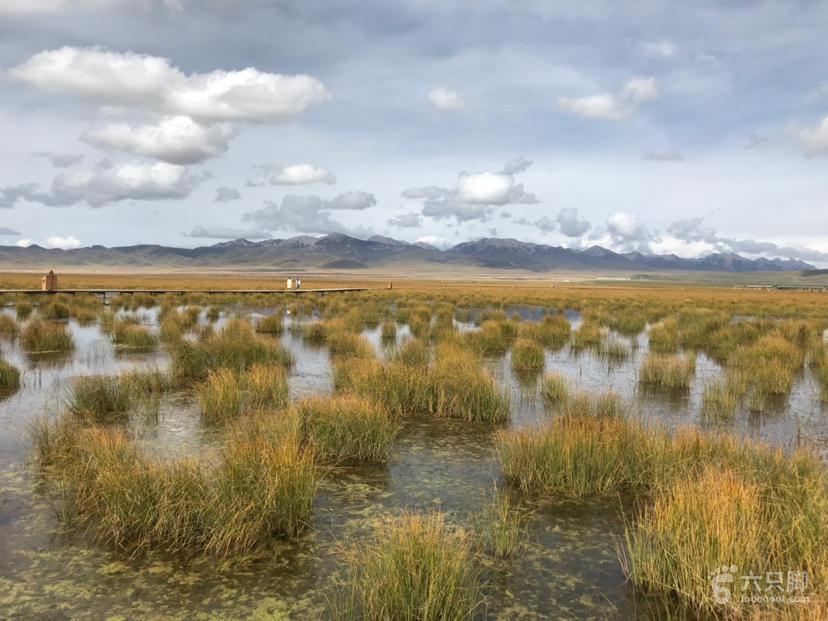 若尔盖湿地保护区脚印-19