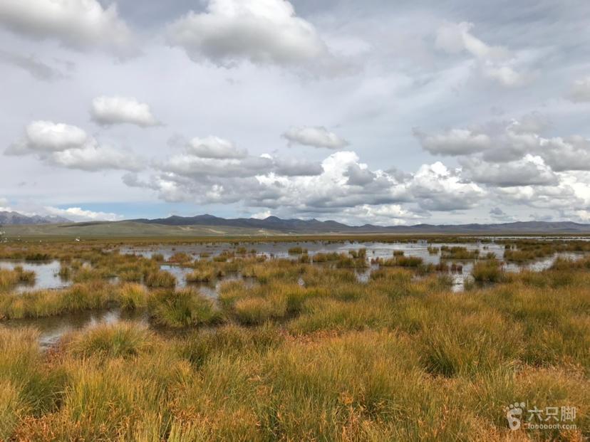 若尔盖湿地保护区脚印-9