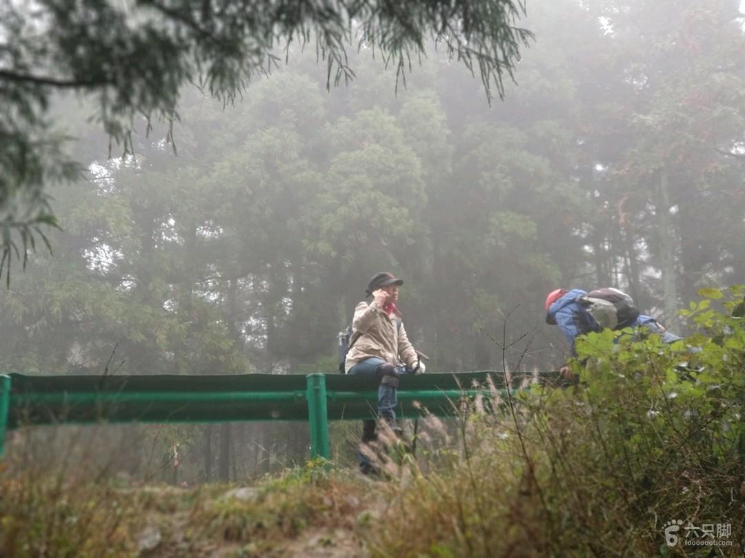 鹿田原始森林公园