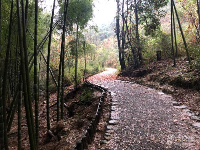 萧山国家登山健身步道小环线脚印-31