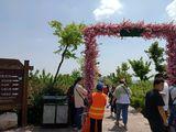 花卉园入口