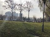 增加河右公園