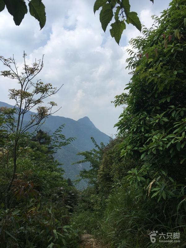 单人重装五指峰乡光菇山登顶齐云山走到这开始看到美景