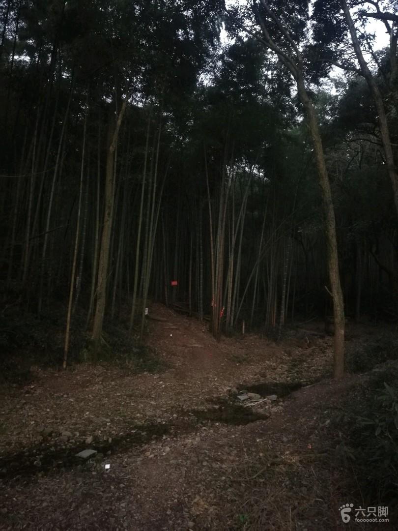 峰外峰·神犬哮天土路上山, 步行约1公里,耗时20分钟可达标毅主山脊游步道