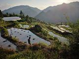 岩门村的梯田,村民正在种单季稻