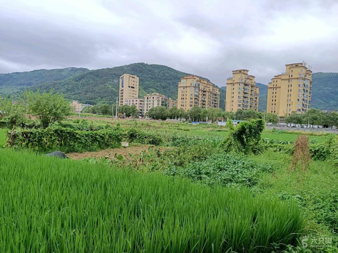 2019-08-25 骑行 (平阳腾蛟赤岩山风景区)22