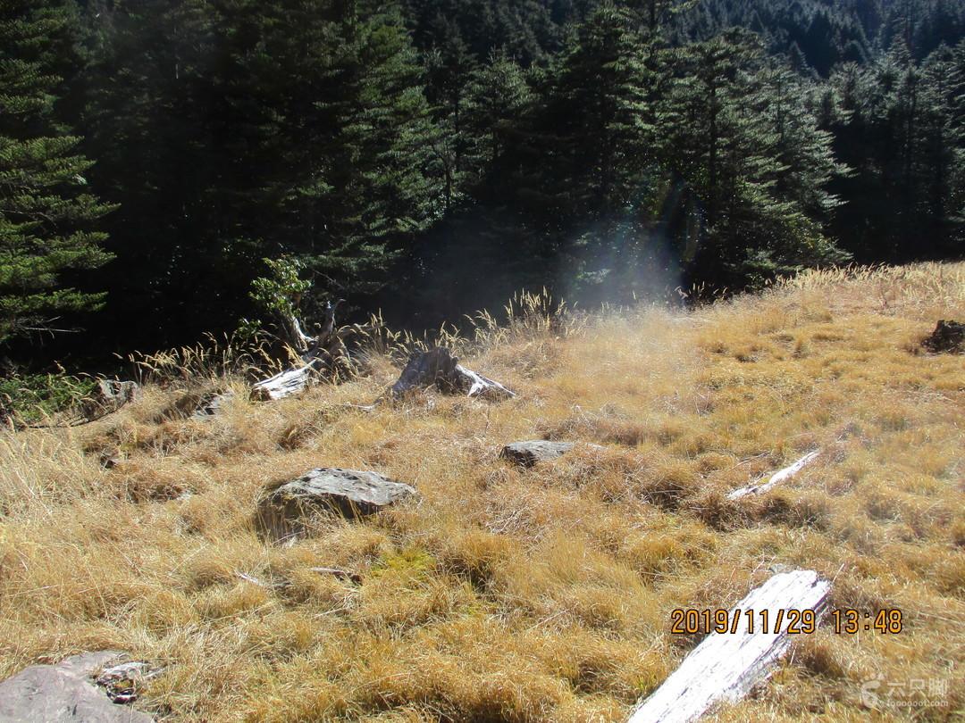 20191129凉山州普格?螺髻山风景名胜区(4A级景区)初冬的尔乌湿地已经枯黄