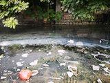 霞露村大干引韓支渠,明顯有生活污水混入